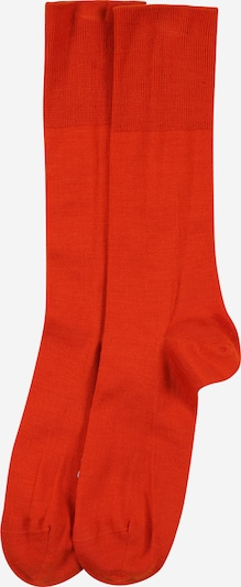 Șosete FALKE pe portocaliu închis, Vizualizare produs
