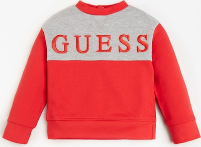 GUESS KIDS Sweatshirt in grau / rot, Produktansicht