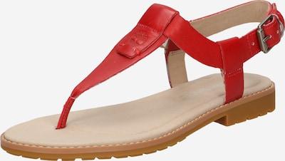 TIMBERLAND Sandalias de dedo 'Chicago Riverside' en rojo, Vista del producto