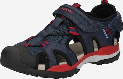 GEOX Sandale in marine / rot, Produktansicht