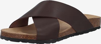 Bianco Sandały 'BIACEDAAR' w kolorze czekoladowym, Podgląd produktu