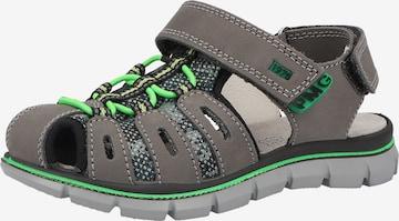 Chaussures ouvertes PRIMIGI en gris