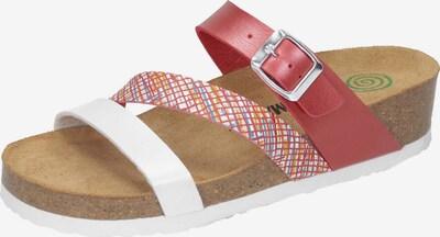 DR. BRINKMANN Pantolette in mischfarben, Produktansicht
