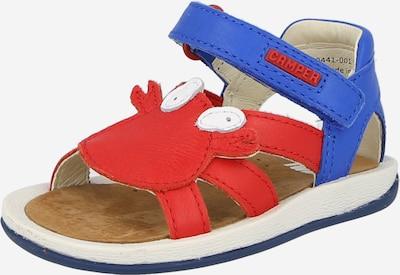 CAMPER Zapatos abiertos 'Twins' en azul / rojo / blanco, Vista del producto