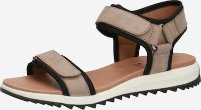 CAPRICE Sandale in ecru / schwarz, Produktansicht