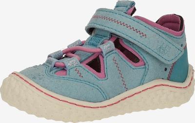 Pepino Halbschuhe in blau / pink, Produktansicht