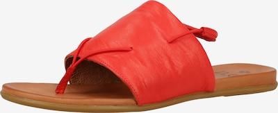 ILC Sandalen in rot, Produktansicht