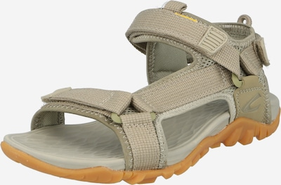 CAMEL ACTIVE Trekking sandal in Taupe, Item view