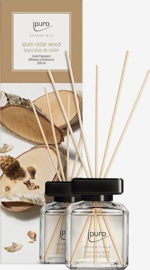 ipuro Raumduft 'Cedar Wood' in transparent, Produktansicht