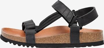 SCHOLL Hiking Sandals 'Heaven' in Black
