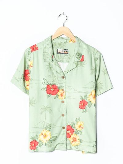 Havana Jack'S Cafe Hawaiihemd in XXL-XXXL in pastellgrün, Produktansicht