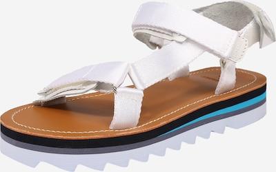 Sandale cu baretă Superdry pe albastru deschis / gri închis / alb murdar, Vizualizare produs