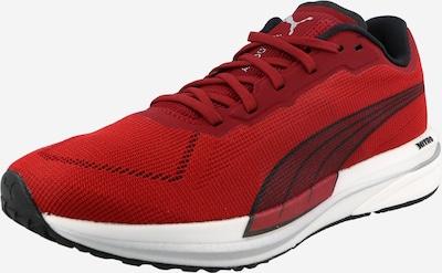 PUMA Laufschuh in rot / schwarz, Produktansicht
