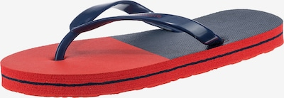 AquaWave Beach & Pool Shoes in Blue / Blood red, Item view