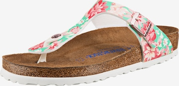 BIRKENSTOCK T-Bar Sandals 'Gizeh' in Mixed colors