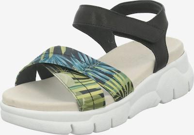 GERRY WEBER SHOES Sandale 'Arzignano ' in blau / grün / schwarz, Produktansicht