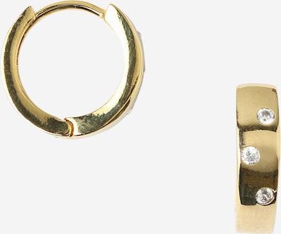 Orelia Náušnice 'Huggie Hoops' - zlatá, Produkt