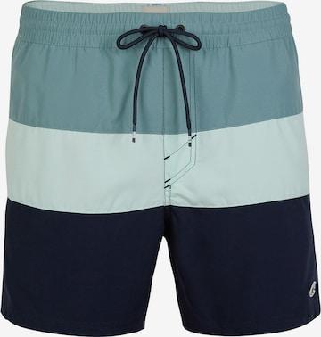O'NEILL Surfaripüksid, värv sinine