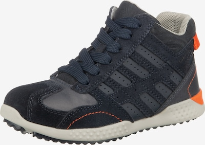 GEOX Sneaker in dunkelblau, Produktansicht