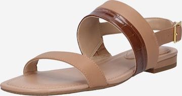 Lauren Ralph Lauren Sandaal 'KRISTI', värv pruun