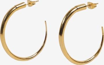 Scalpers Earrings 'Hoops' in Gold