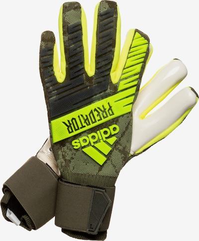ADIDAS PERFORMANCE Sporthandschoenen in de kleur Kiwi / Spar, Productweergave
