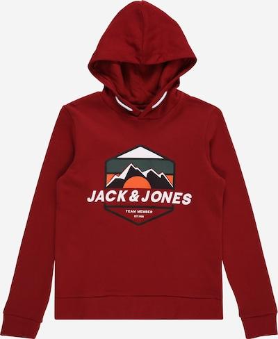 Jack & Jones Junior Sweatshirt 'DEHSEL' in mischfarben / rot, Produktansicht