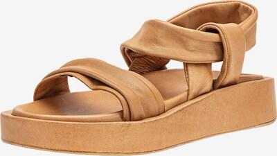 INUOVO Sandalen met riem in de kleur Bruin, Productweergave