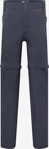 DARE2B - Pantalón de montaña 'Tuned In II Z/O' en gris