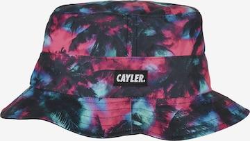 Cayler & Sons Hut in Mischfarben