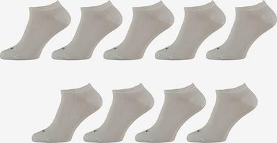 Apollo Socken in weiß, Produktansicht
