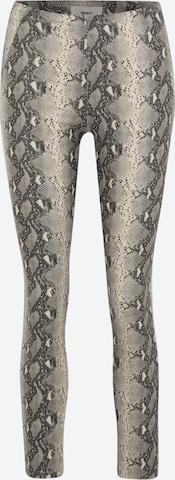 OBJECT Petite Leggings in Grey