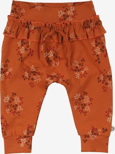 Kelnės 'Flora' iš Müsli by GREEN COTTON, spalva – omarų spalva / pastelinė oranžinė / raudona / kraujo spalva, Prekių apžvalga