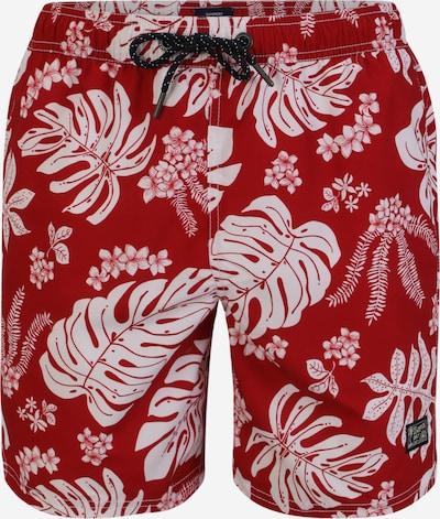 Șorturi de baie 'CAMPUS HAWAIIAN' Superdry pe roșu / alb, Vizualizare produs