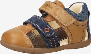 Chaussure basse 'Kaytan' GEOX en marron