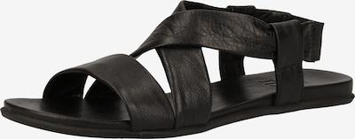 ILC Sandalen in schwarz, Produktansicht