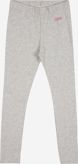 ESPRIT Leggings in grau, Produktansicht