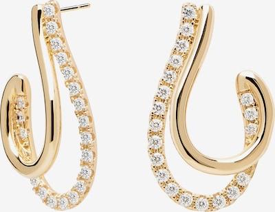 P D PAOLA Earrings 'Koy' in gold, Produktansicht