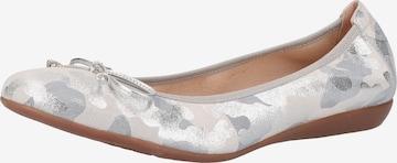 Wonders Ballerinas in Grau