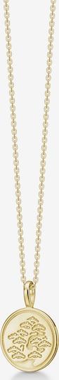 Polar Jewelry Goldkette in gold, Produktansicht