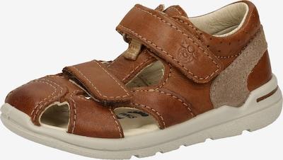Pepino Sandale in braun, Produktansicht