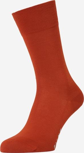 FALKE Sockor i ljusgrå / roströd, Produktvy