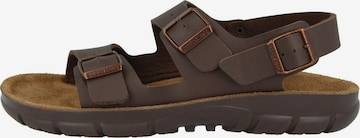 BIRKENSTOCK Sandale ' Kano ' in Braun