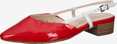 PETER KAISER Ballerina in rot / weiß, Produktansicht