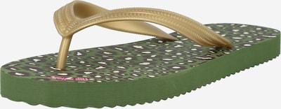 Infradito FLIP*FLOP di colore oliva, Visualizzazione prodotti