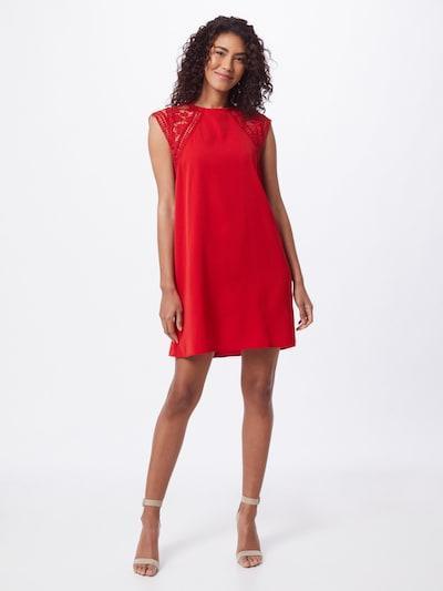 Molly BRACKEN Šaty - červená, Model/ka