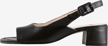 Högl Sandaletten 'Luisa' in Schwarz