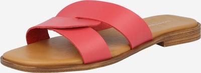 Zoccoletto Shoe The Bear di colore salmone, Visualizzazione prodotti