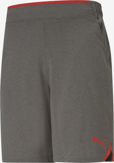 PUMA Sporthose in grau / rot / schwarz, Produktansicht