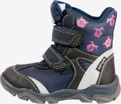 Pio Boots 'Pio' in blau: Frontalansicht